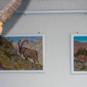 Ausstellung 2012: Steinbock und Bilder