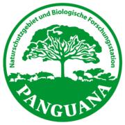 Ausstellung 2013: Logo Panguana