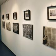 Ausstellung 2014: Bilder