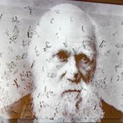 Ausstellung 2014: Darwin