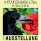 Ausstellung 2016: Plakat Raben & Rosen