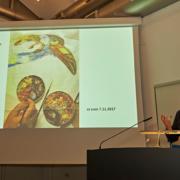Ausstellung 2017: Prof. Heinzeller