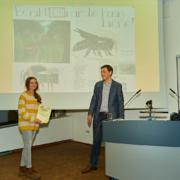 Ausstellung 2019: Wildbienen, Emmi Dingler