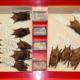 Steiner-Sammlung: Myotis